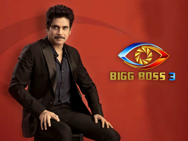 This Week Elimination from Bigg Boss 3